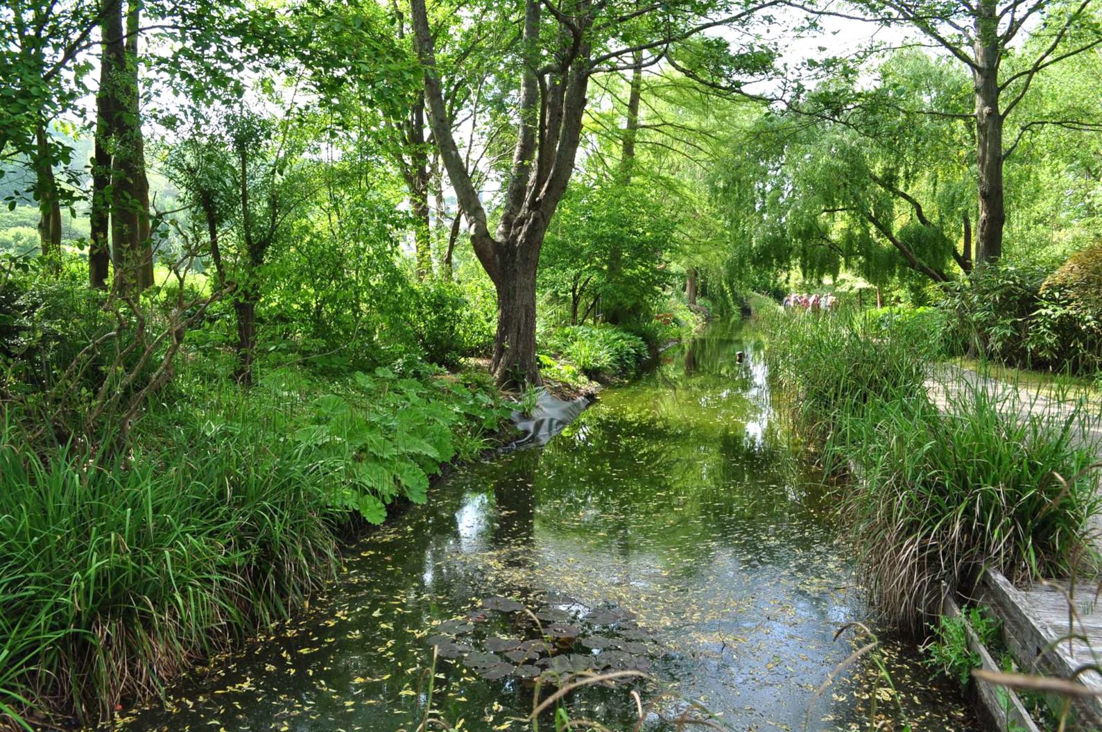 Jardins Valloires6